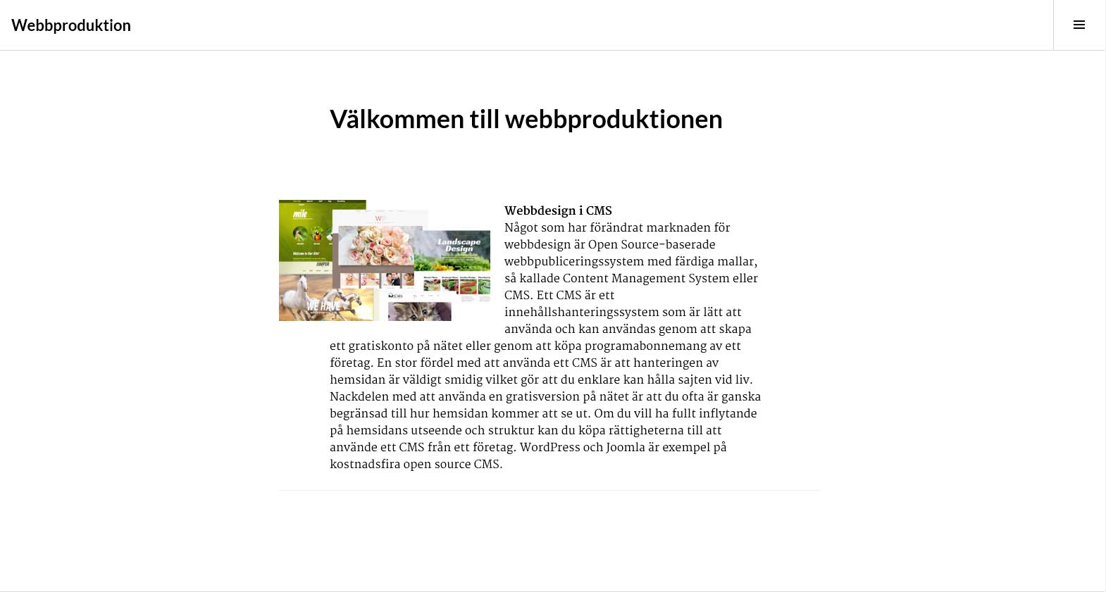 webbproduktion